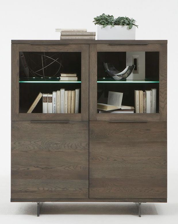 Bücherregal massiv dunkel mit Glaselementen